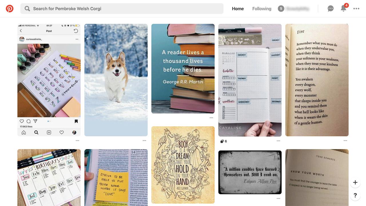 Pinterest – The World's Catalog of Ideas